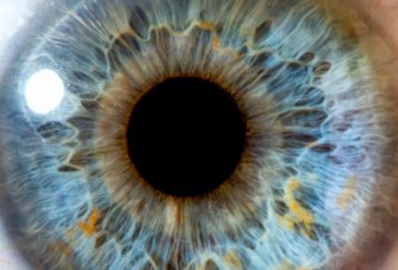 Ophthalmology+(1)